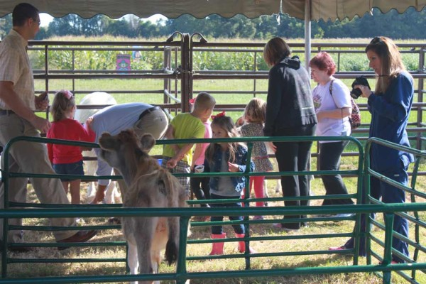 School field trips and tours at Reid's Orchard