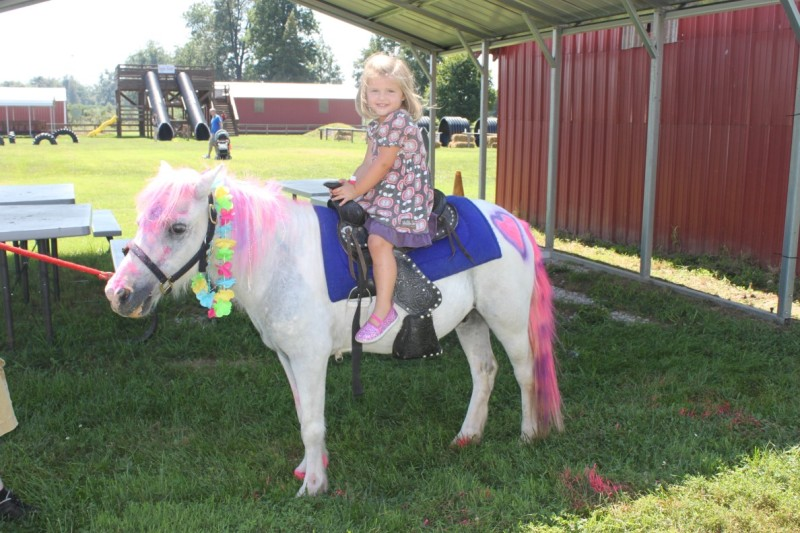 Birthday Parties at Reid's Orchard with Horse and Pony Rides